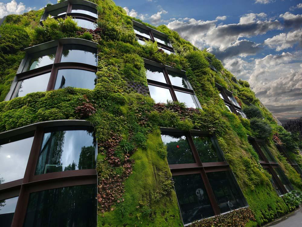 Bautrends: Wenn die Hauswand zum Garten wird